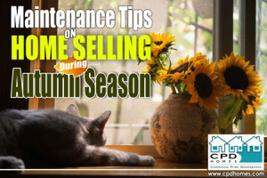 Maintenance Tips on Home Selling on Autumn copy copy